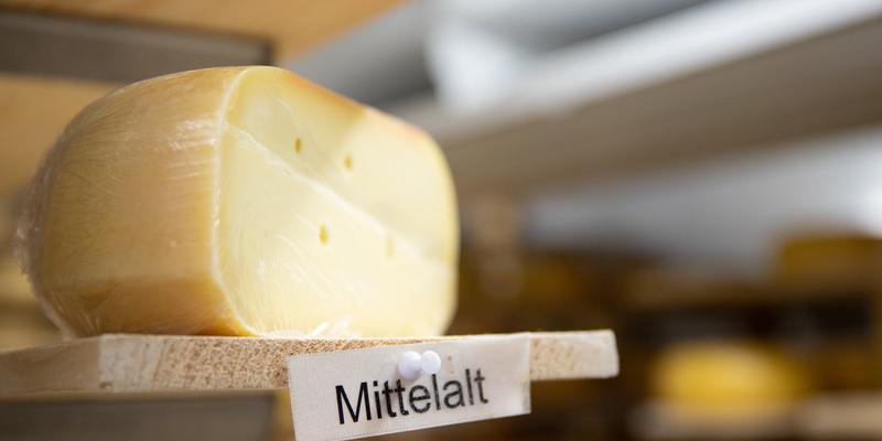 4. Workshop Nachhaltigkeit und Milchverarbeitung