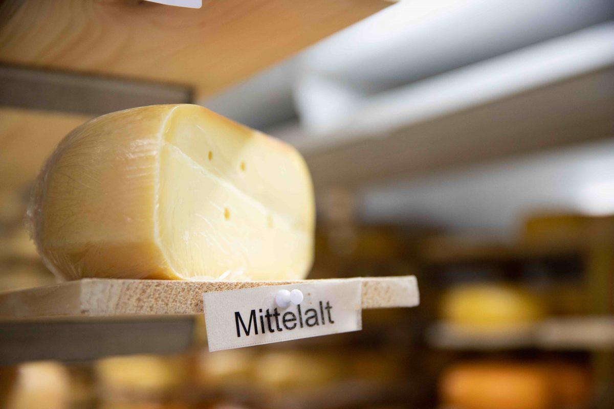 Woher kommt guter Käse?