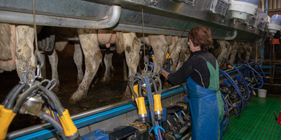 5. Workshop Nachhaltigkeit und Milchverarbeitung